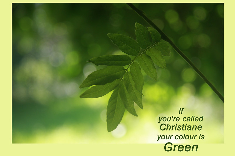 _MG_6472 green