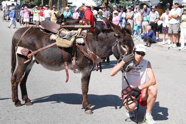 Buena Vista Burro Race 2012
