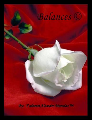 Balances © by Tadaram Alasadro Maradas
