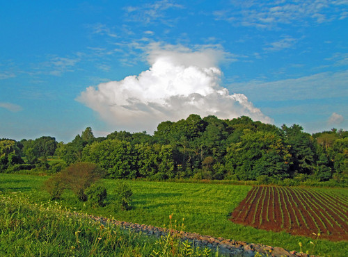 Crops and clouds by Barbara L. Slavin