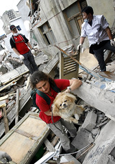 Kati rescuing dog Sichuan earthquake May 2008. Photo Credit:IFAW