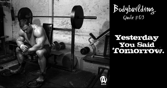 Bodybuilding motivation flickr photo sharing