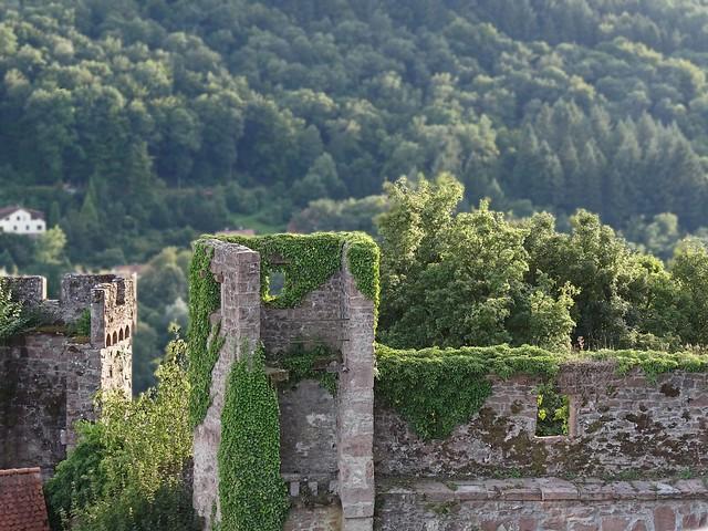 hirschhorn castle turrets flickr photo sharing
