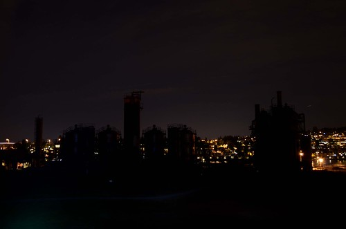 Gasworks Park At Night