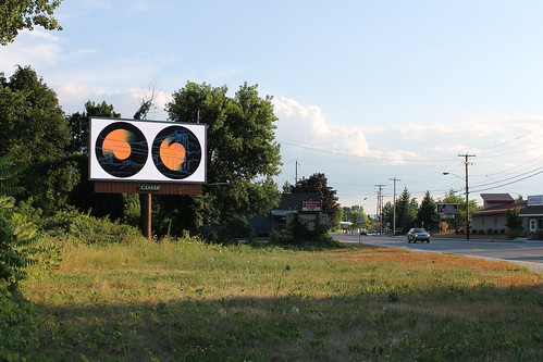 Albany Billboard Art Project 2012 - Julia Cocuzza (21)