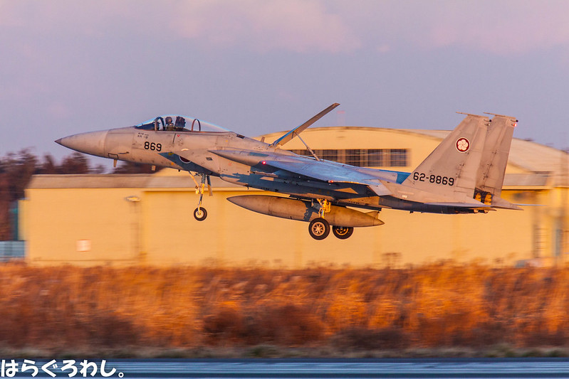 305SQ F-15J #62-8869 @ Ibaraki Hyakuri A.B.