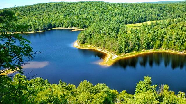 scorch lake algonquin
