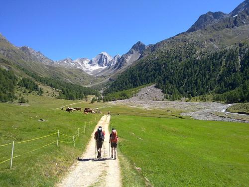 Der Weg zu den Eishöfen führt mäßig ansteigend durch das grüne Tal