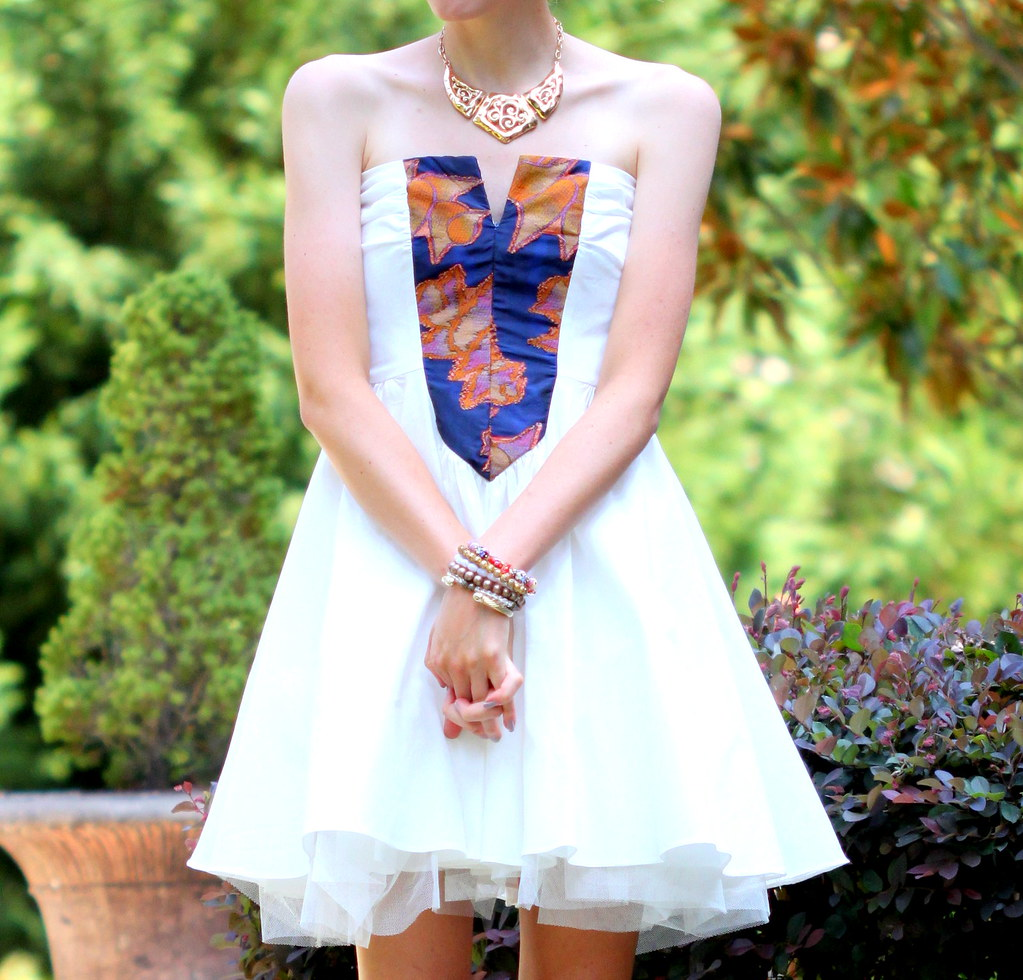 Swan Princess7