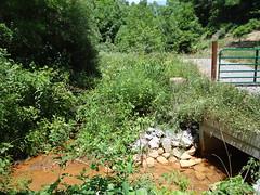 Ely-Puckett Creek
