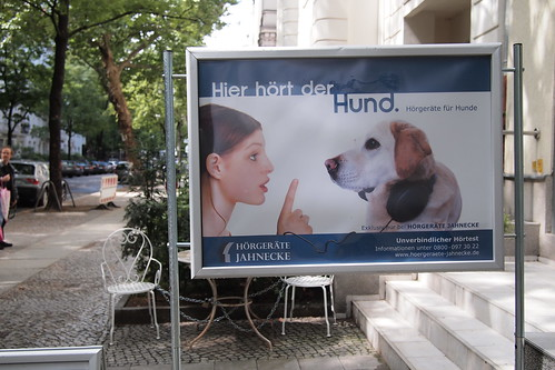 Hearing Aid For Dogs