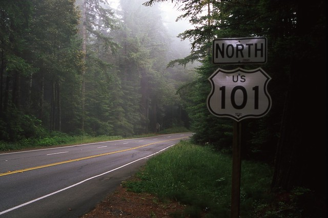 Foggy 101