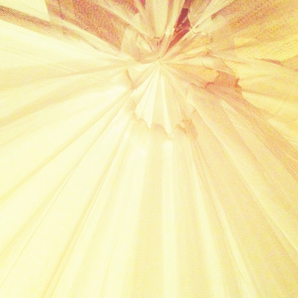 View from my pillow. #mosquitonet