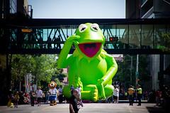 Kermit Salute