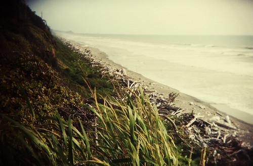 driftwood coast - holga by elle.hanley