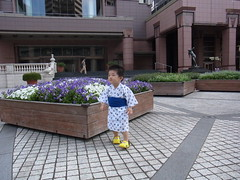 2012yukatatora