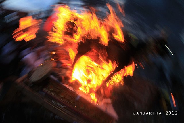 image of burning lembu, a black bull sarcophagus-shaped during mass cremation at ubud