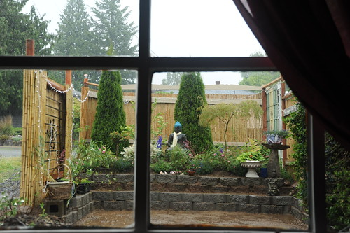 Garden for the Buddha, through the window, rainy day, trees, everything planted except grass, Seattle, Washington, USA by Wonderlane