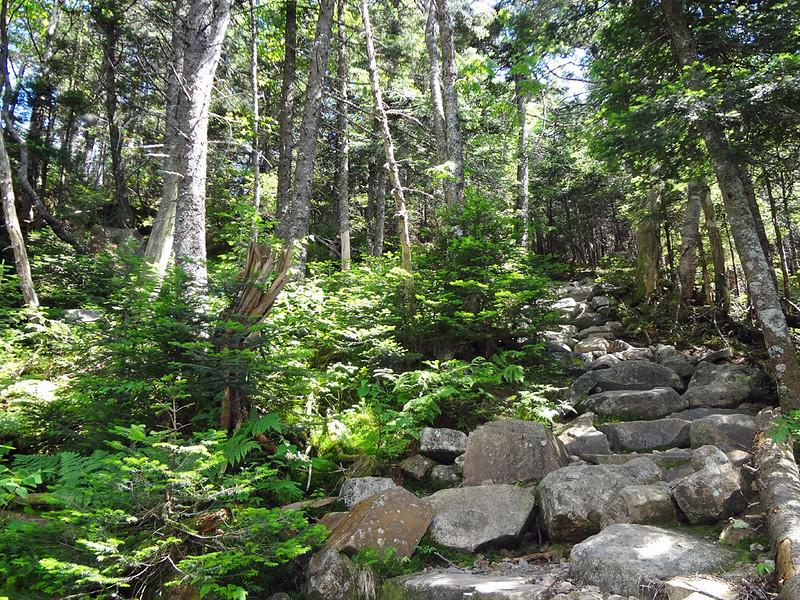 AT Climb to Galehead Hut