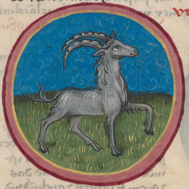 Zodiac sign of CAPRICORN in a 15th century manuscript