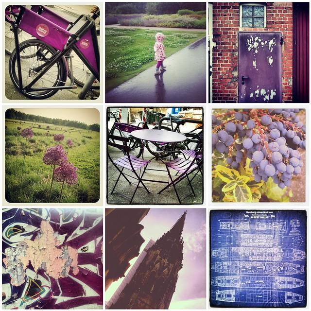 violet mosaic