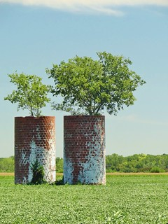 Double silos with trees