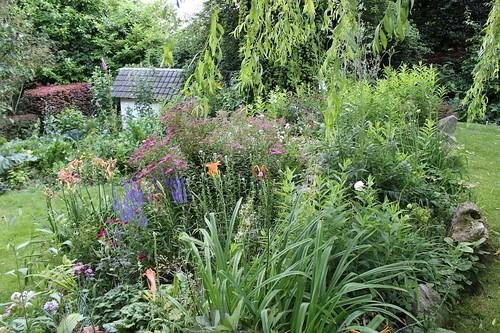 Le jardin de Laurent - Page 2 7752057550_eb4507ed9b