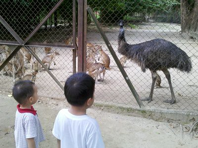 20120806_taipingzooemu