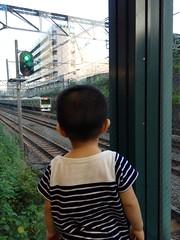 電車見るとらちゃん (2012/8/12)