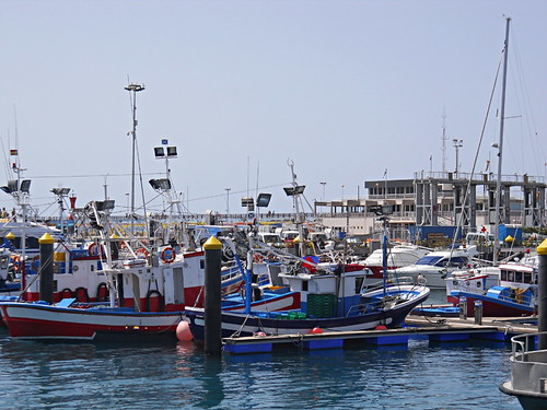 Fishing boats in Los Cristianos harbour