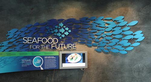 cool fish graphics
