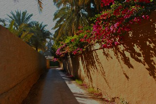saudi village street