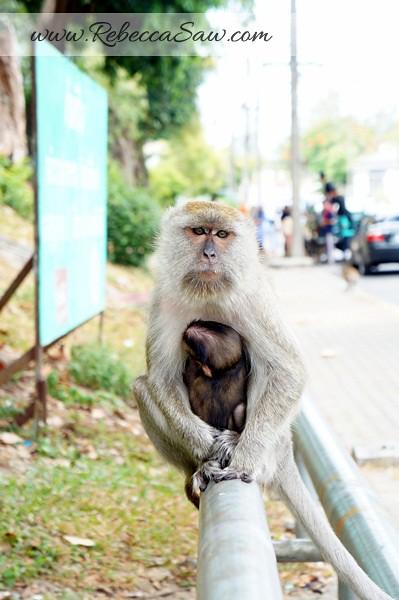 Singora Tram Tour - songkhla thailand- tang kuan hill-012