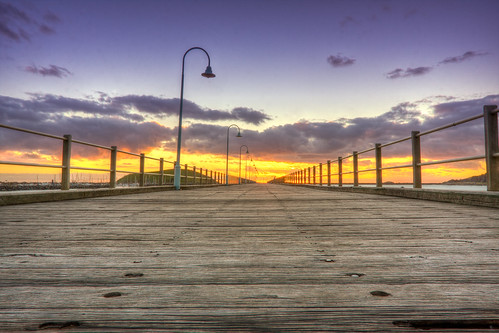 wood sea sun color colour bird tourism sunrise canon landscape island coast pier wooden jetty australia tourist wharf nsw qld rise mutton 2012 coffs coffsharbour startrail thephotojourney coffscoast thephotojourneycom scottbourke