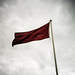 Small photo of Red Flag