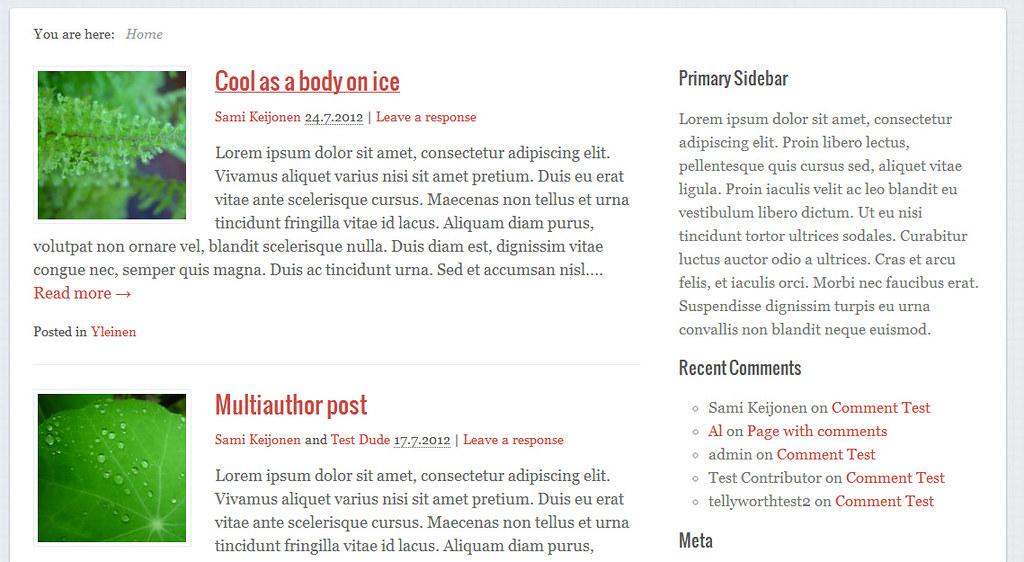 Path Theme - Một theme WordPress miễn phí trên cả tuyệt vời 200