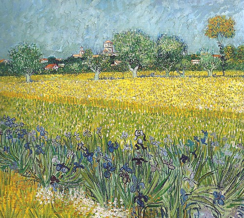 art philadelphia netherlands dutch up amsterdam museum painting gallery museu close with view fine vincent arts musée musee m impressionism museo van gogh arles impression impressionist muzeum irises foreground müze 1888 musse museumuseum