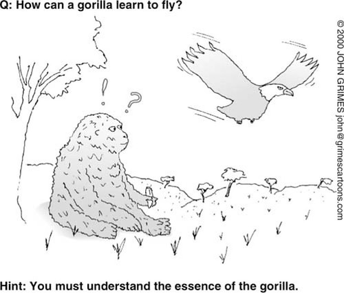 How can a gorilla learn to fly?