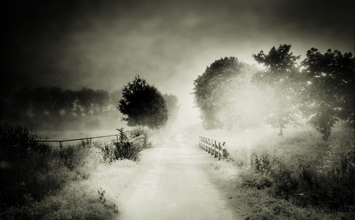 The Misty Bridge