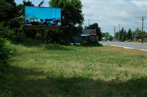 Albany Billboard Art Project 2012 - Julia Cocuzza (8)