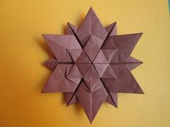 12 Point Shielded Star