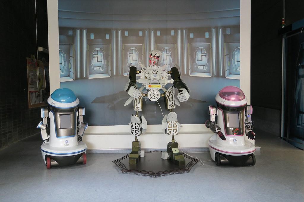 桃園市祥儀機器人 (13)