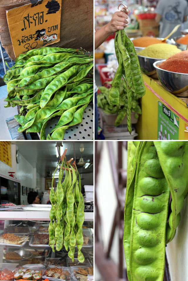 Stink beans (or bitter beans) on display in Bangkok