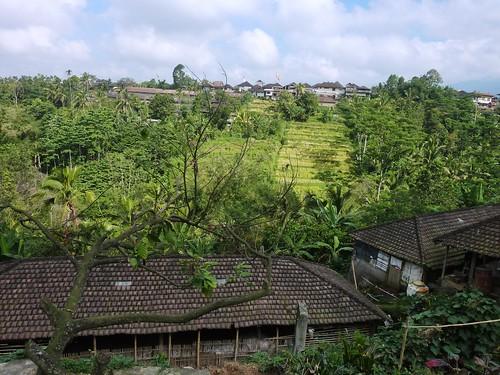 Bali-Route Legian-Jatiluwih (29)