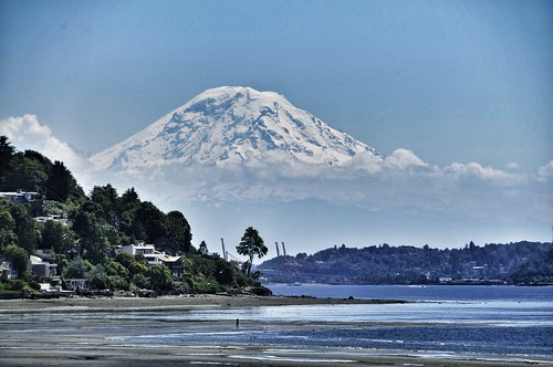 07-05-12 Discovery Park, Seattle by roswellsgirl