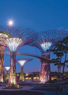 Gardens by the Bay, Singapore (courtesy of KPMG, Infrastructure 100)