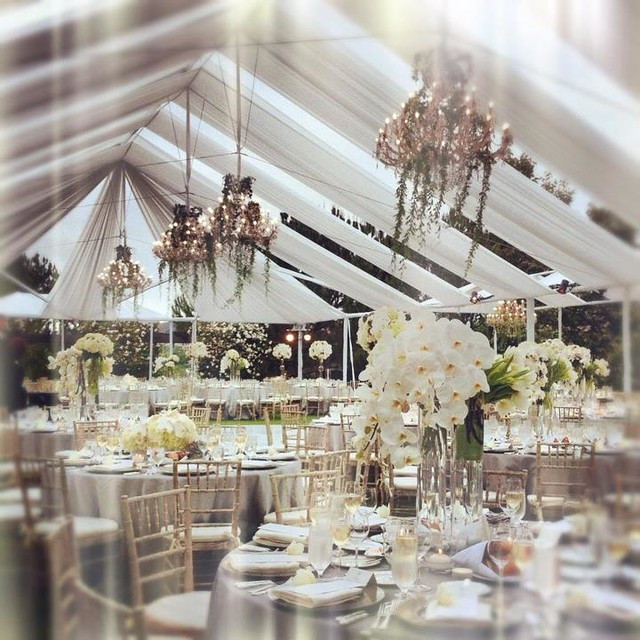 Elegant Wedding Reception Decoration: Elegant White Wedding Reception Inspirations