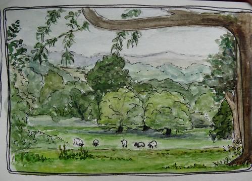 Hidcote View