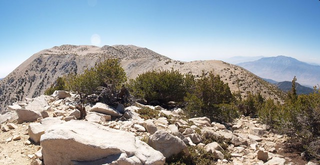 San Gorgonio Mountain and San Jacinto Peak from the eastern summit of Jepson Peak