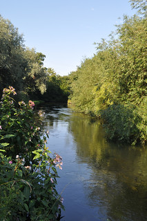 River Wandle in Watermeads Nature Reserve